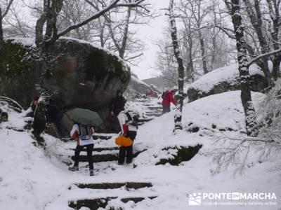 Ruta San Lorenzo de el Escorial - Zarzalejo - Robledo de Chavela _ Silla de Felipe II - Nieve en el